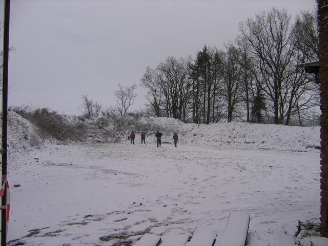 Novoročák 2010